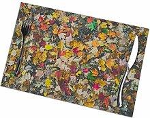 GuyIvan Maple Placemats Plate Mats Table Mats