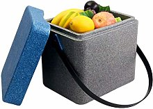 Gymqian Car Refrigerator-Cooler Box 11L Portable
