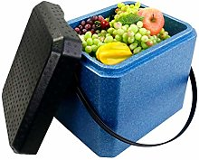 Gymqian Car Refrigerator-Cooler Box 21L Portable