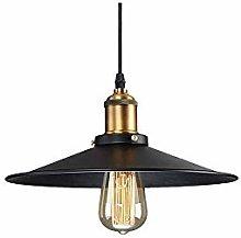 GYZLZZB LED Lights Indoor Chandelier Light Shade