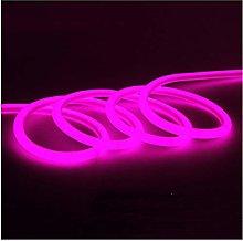H/A Neon flexible LED lamp strip DC220V round tube