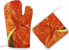 HaiYI-ltd Oven Mitts and Pot Holders Set,Gorgeous