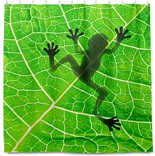 HaJie Bathroom Shower Curtain Tropical Leaves Frog