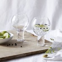 Halden Gin Glasses - Set of 2, Clear, One Size