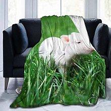 Hangdachang Cute Baby Pig Green Grass Soft Flannel