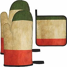 Hangdachang Vintage Italian Flag Oven Mitts Gloves
