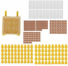 Haofy Queen Rearing Kit Beekeeping Tool with Cell