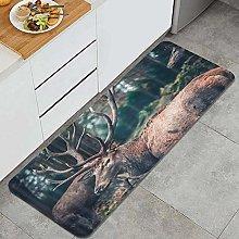 HASENCIV Floor Mat,Deer Wildlife Rustic Elk Foggy