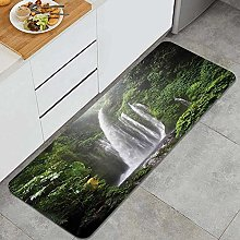 HASENCIV Floor Mat,Exotic Rainforest with