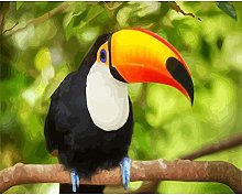 HCDZF Paint by Numbers Branch Toucan DIY Number