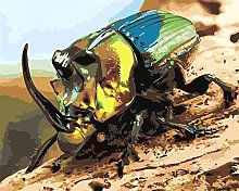 HCDZF Paint by Numbers for Adults Beetle Insect
