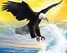 Hd Mediterranean Mediterranean Eagle Background