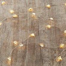 Heart Fairy Lights - 40 Bulbs, Clear, One Size