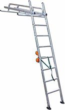 Heavy Duty Conservatory Cleaning Ladder Provides