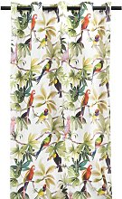 HEMA Curtain Ready-made With Rings 270x140 Parrot