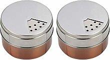 Hemoton 2 Pcs Stainless Steel Spice Shaker