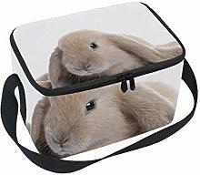 hengpai Brown Rabbit Lying Down White Lunch Box