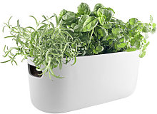 Herb Pot water storage - / Herb tray - Ceramic by