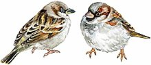 HGFJG 2Pcs Hand Painted Birds Wall Stickers for