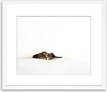 Hidden Cat Wood Framed Print & Mount, 58 x 73cm,