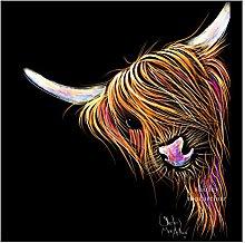 Highland Cows Box Canvas Print (Wall Art, Cow