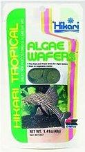 Hikari Algae Wafers [SNG] 40g - 48685