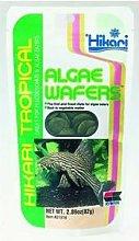 Hikari Algae Wafers [SNG] 82g - 48686