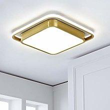 HIL Modern Led Ceiling Light, H65 Brass Square