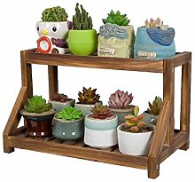 HLL Plant Stand,Solid Wood Desk Stand for 2-Tier