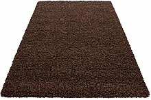 HMWD Modern Chocolate Brown Fluffy Thick Pile Anti