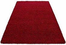 HMWD Modern Fluffy Thick Deep Pile Non-Slip Red
