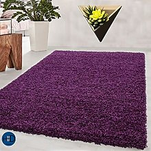 HMWD ® Purple Shaggy Rugs New Non Shed Thick
