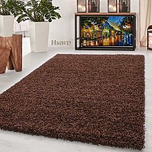 HMWD Thick Pile Fluffy Shaggy Large Area Rug