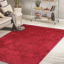 HomeArt Fluffy Shaggy RUG for Living Room,
