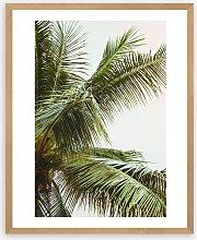 Honeymoon Hotel - 'Palms Above' Wood