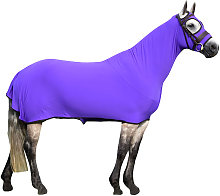 Honsie Life (X Large) (Ultra Violet with Black