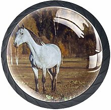 HorseHorse Cabinet Knob Glass for Drawer Dresser
