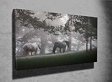 Horses grazing on Pasture Photo Canvas Print