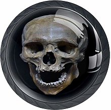 Human Skull with Black Background Drawer Pull