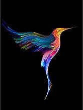 Hummingbird Colourful On Black Large Wall Art