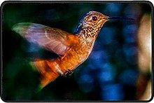 Hummingbird Flying Doormat Rug Easy to Clean Non