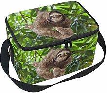 Hunihuni Art Painting Animal Sloth Portable