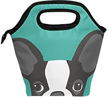 hunihuni Boston Terrier Dog Insulated Thermal