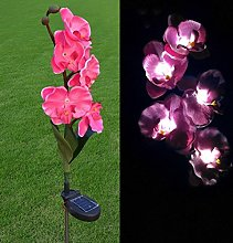 Hunpta 5 Head Solar LED Decorative Outdoor Lawn