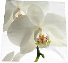 Hustor Cloth Napkins,Floral White Flowers Orchid