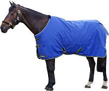 Hy StormX Original 100 Turnout Rug (5ft 9in)