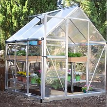 Hybrid 6 Ft W x 6 Ft D Greenhouse Palram Colour: