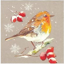 ideal home range - 40 x Winter Robin on Linen