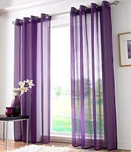 Ideal Textiles Plain Voile Curtain Panel, Ring Top