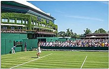 IFUNEW Canvas pictures Wimbledon Oil Print Poster